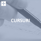 Cursuri Lighthouse Translations